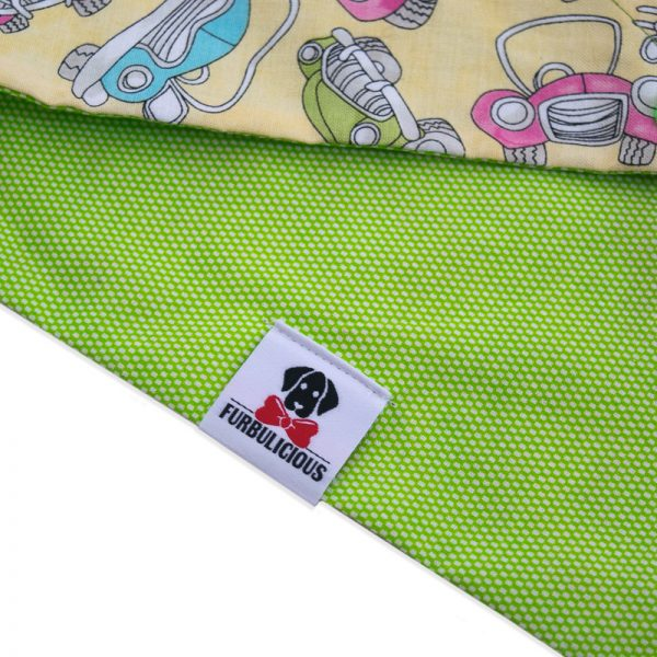 Furbulicious double sided snap pet dog bandana in green
