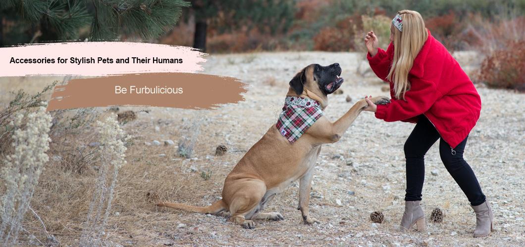 Furbulicious pet accessories dog bandanas