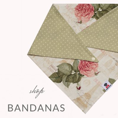 Furbulicious Bandana for Pets with Paris Design